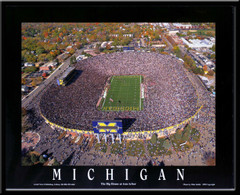 The Big House Aerial Photo Poster