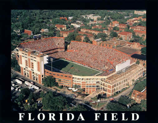 Florida Field Home Of Gators Football The Swamp Poster
