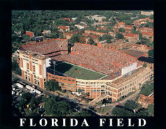Florida Field Home of Florida Gators Football Aerial Photo Poster