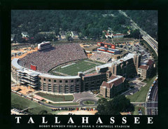 Florida State Seminoles Doak S. Campbell Stadium Aerial Photo Poster