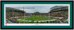 MSU Spartans 19 Yard Line Panoramic Picture matted
