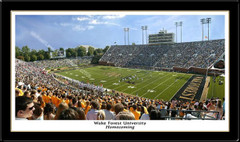 Wake Forest Football Homecoming Framed Picture