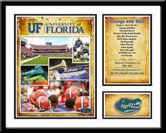 Orange and Blue Florida Gators Memories & Milestones Collection