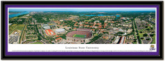 Louisiana State University Aerial Panoramic Picture matted