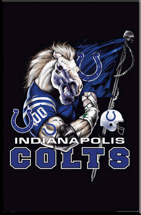 Indianapolis Colts Logo Framed Poster