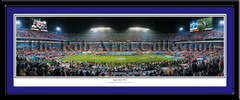 Indianapolis Colts Super Bowl XLI 50 Yard Line with matting