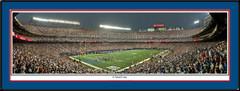 New York Giants 6 Yard Line Panoramic Poster