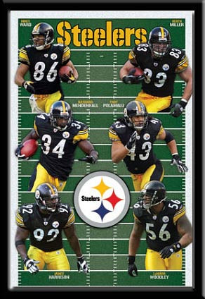 Pittsburgh Steelers Nfl Football Field Framed Picture