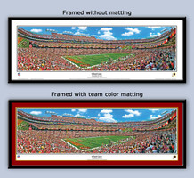 Washington Redskins Fedex Field 6 Yard Line Framed Picture