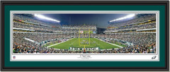 Philadelphia Eagles Lincoln Financial Field 17 Yard Line Framed Picture Double Mat and Black Frame