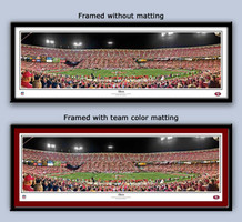 San Francisco 49ers 3Com Park Panoramic Framed Poster