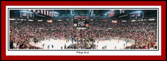 Detroit Red Wings - Wings Soar Framed Poster
