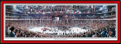 Carolina Hurricanes RBC Center - 2006 Stanley Cup Celebration