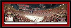 Detroit Red Wings 2008 Stanley Cup Champions With Insets Poster
