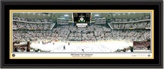 Pittsburgh Penguins 2009 Stanley Cup Champions Picture