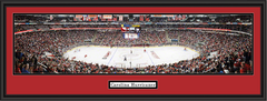 Carolina Hurricanes Panoramic Hockey Home Ice Poster