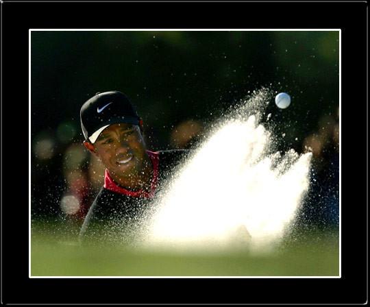Tiger Woods - Sand Shot