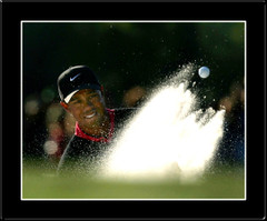 Tiger Woods - Sand Shot