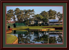Sawgrass 17th Hole Framed Golf Photo