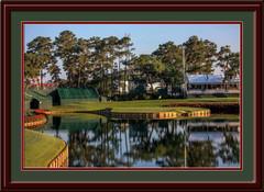 Sawgrass 17th Hole Framed Golf Photo