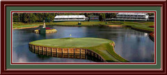 TPC Sawgrass 17th Green Panoramic Framed Golf Photo