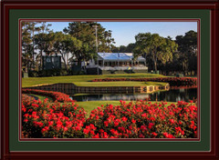 Golf Photo of TPC Sawgrass 17th Hole Framed Picture