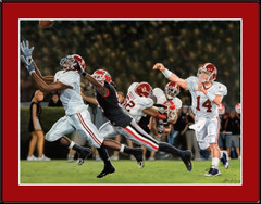 Alabama Crimson Black-Eye Limited Edition Framed Picture