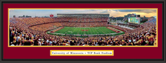 TCF Bank Stadium Panoramic Poster Minnesota Framed Picture