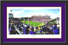 ECU Dowdy-Ficklen Stadium Framed Picture Pirate Storm