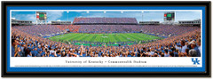 KY Commonwealth Stadium Wildcats Framed Picture matted