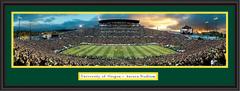 Oregon Autzen Stadium Ducks Panoramic Picture