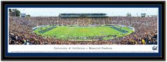Cal Golden Bears Memorial Stadium Framed Picture matted