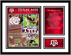 Texas A & M Memories and Milestones Picture