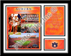 Auburn Memories and Milestones Framed Picture