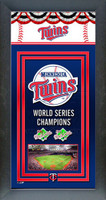 Minnesota Twins World Series Championship Banner