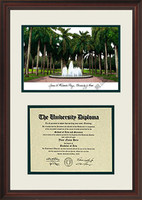 University of Miami Scholar Diploma Frame
