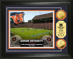 Auburn Jordan Hare Stadium Gold Coin Framed Picture