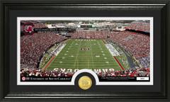 Williams-Brice Stadium Photo with Bronze Coin Photo Mint
