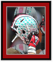 Ohio State Buckeye Leaves Tradition Picture