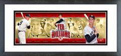 AAIN166 Ted Williams Photoramic