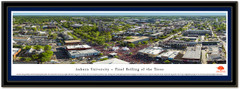 Auburn Rolling of the Trees Aerial Framed Photo matted