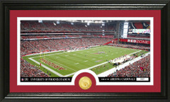 Arizona Cardinals Phoenix Stadium Bronze Coin Photo Mint