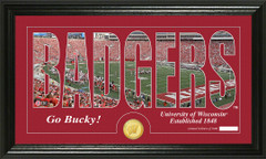 Wisconsin Badgers Word Art Coin Photo Mint
