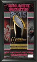 Ohio State 2014 Football National Champions Ticket Pano