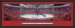 Chicago Blackhawks 2015 Stanley Cup Championship Framed Picture