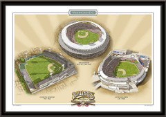 Washington DC Historic Ballparks of Baseball Framed Print