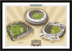 Washington DC Historic Ballparks of Baseball Framed Print