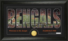 Cincinnati Bengals Word Silhoutte Coin Photo Mint