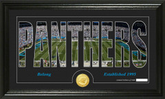 Carolina Panthers Word Silhoutte Coin Photo Mint