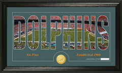 Miami Dolphins Word Silhoutte Coin Photo Mint